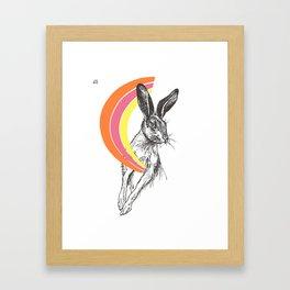 Rainbow Collection / rabbit Framed Art Print