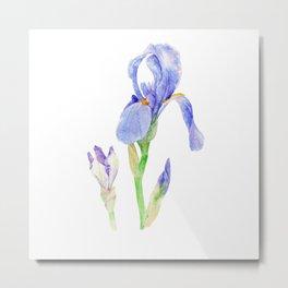 Watercolor irises Metal Print