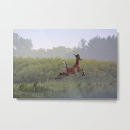 Leaping Away Metal Print