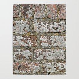 old wall bricks Poster