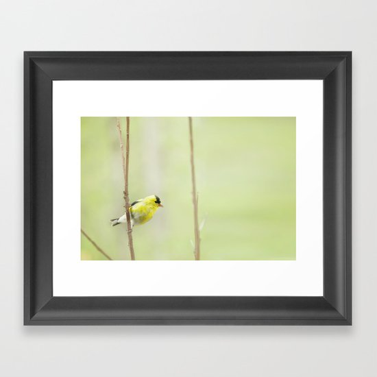 Little Mellow Yellow Framed Art Print