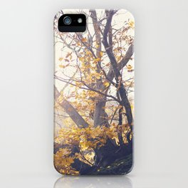 Dreamy yellow forest iPhone Case