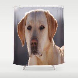 Portrait of A Golden Labrador Retriever Shower Curtain