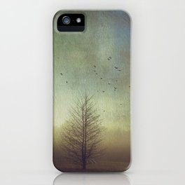 Mystery and Imagination iPhone Case