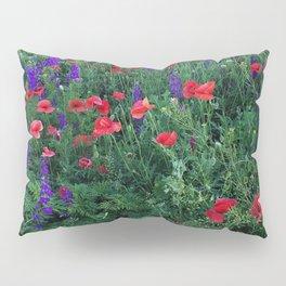 Good buy my Summer Pillow Sham