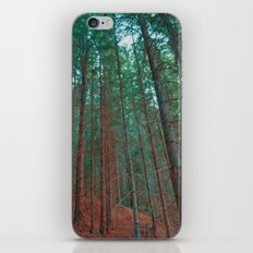 into the woods 03 iPhone & iPod Skin