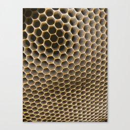 Buzzworthy Canvas Print