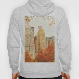 Autumn - Central Park - Fall Foliage - New York City Hoody