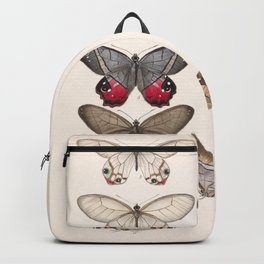 Moths And Butterfly Vintage Scientific Hand Drawn Insect Anatomy Biological Illustration Backpack