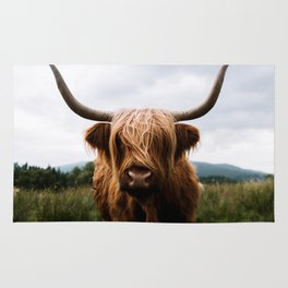 Scottish Highland Cattle in Scotland Portrait II Rug