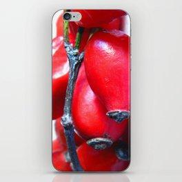 Rose Hip Berries iPhone Skin