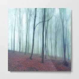 No Noize - Silent Forest Metal Print