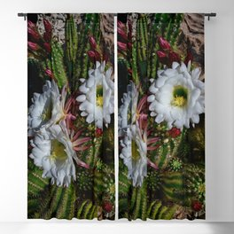 White Argentine_Giant_Cacti in Bloom Blackout Curtain