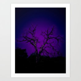 Biloxi tree blue Art Print