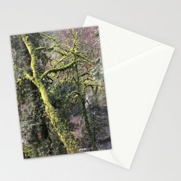 INTO THE WILD X / Oregon Stationery Cards