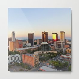 Birmingham Being Cute Metal Print