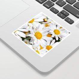 Daisy Flowers 0136 Sticker