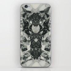 Dash iPhone & iPod Skin