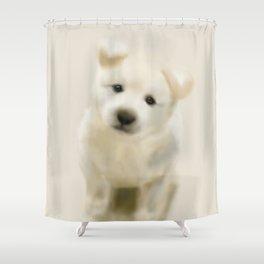 Jindo puppy re Shower Curtain