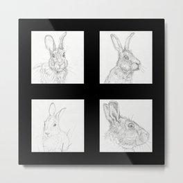 Rabbits 1 Metal Print