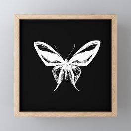 Inverted Butterfly Framed Mini Art Print