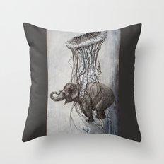 Chang Throw Pillow