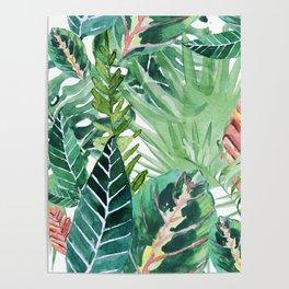 Havana jungle Poster