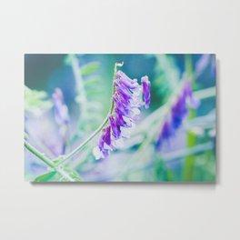 Cool coloured purple flowers  Metal Print