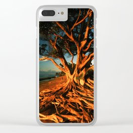 Oceanfront Tree Clear iPhone Case