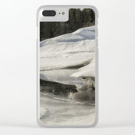 Fish Lake Dimensions Clear iPhone Case