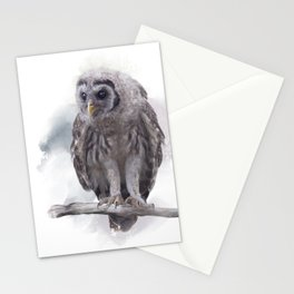 Young Barred Owl Perches on a Branch,Watercolor painting Stationery Cards