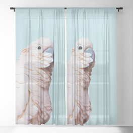 Parrot Photography | Pink Bird |  Tropical | Exotic | Turquoise Art | Blush Pink Sheer Curtain