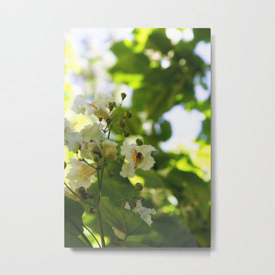 Flowers in the forest Metal Print