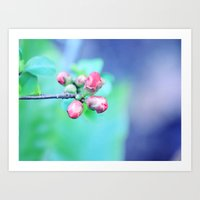 Hello Sweet Spring  Art Print