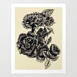 Peonies, black & white Art Print