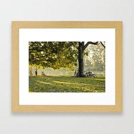 afternoon sun Framed Art Print