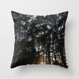 Translucent  Throw Pillow