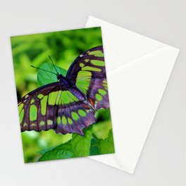 Green And Black Butterfly Stationery Cards