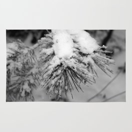Touch of Winter - Black & White Rug