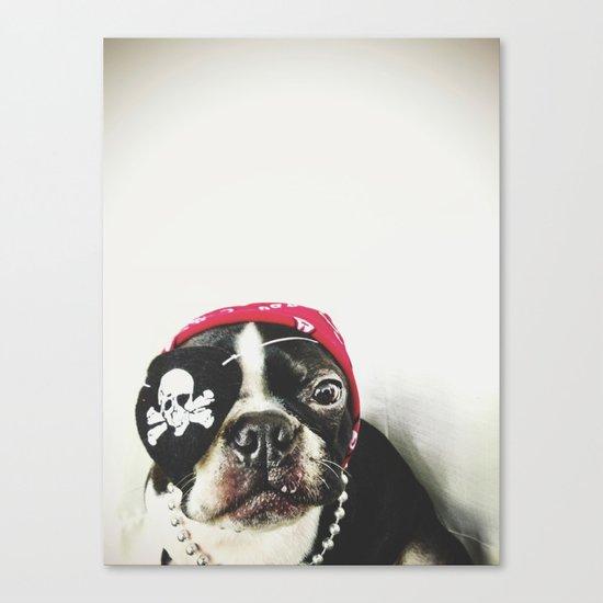 Pirate Terrier Canvas Print