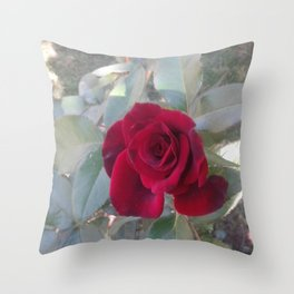 Red Bordo Rose Bloom Throw Pillow