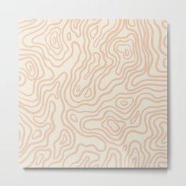 Light Topography Metal Print