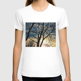 Leafless Tree in the Sunset I T-shirt