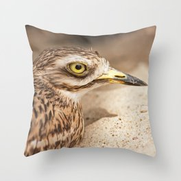Stone-Curlew Throw Pillow