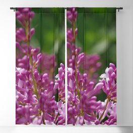 Spring lilac Blackout Curtain