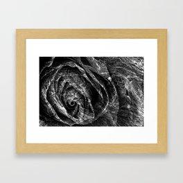 Charred Rose Framed Art Print