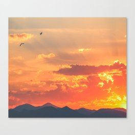 Flying into the Sun Canvas Print