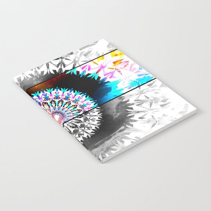 SOLANACEAE Notebook