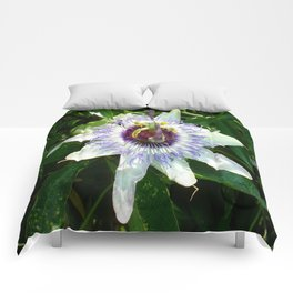 Beautiful Passion Flower With Garden Background  Comforters
