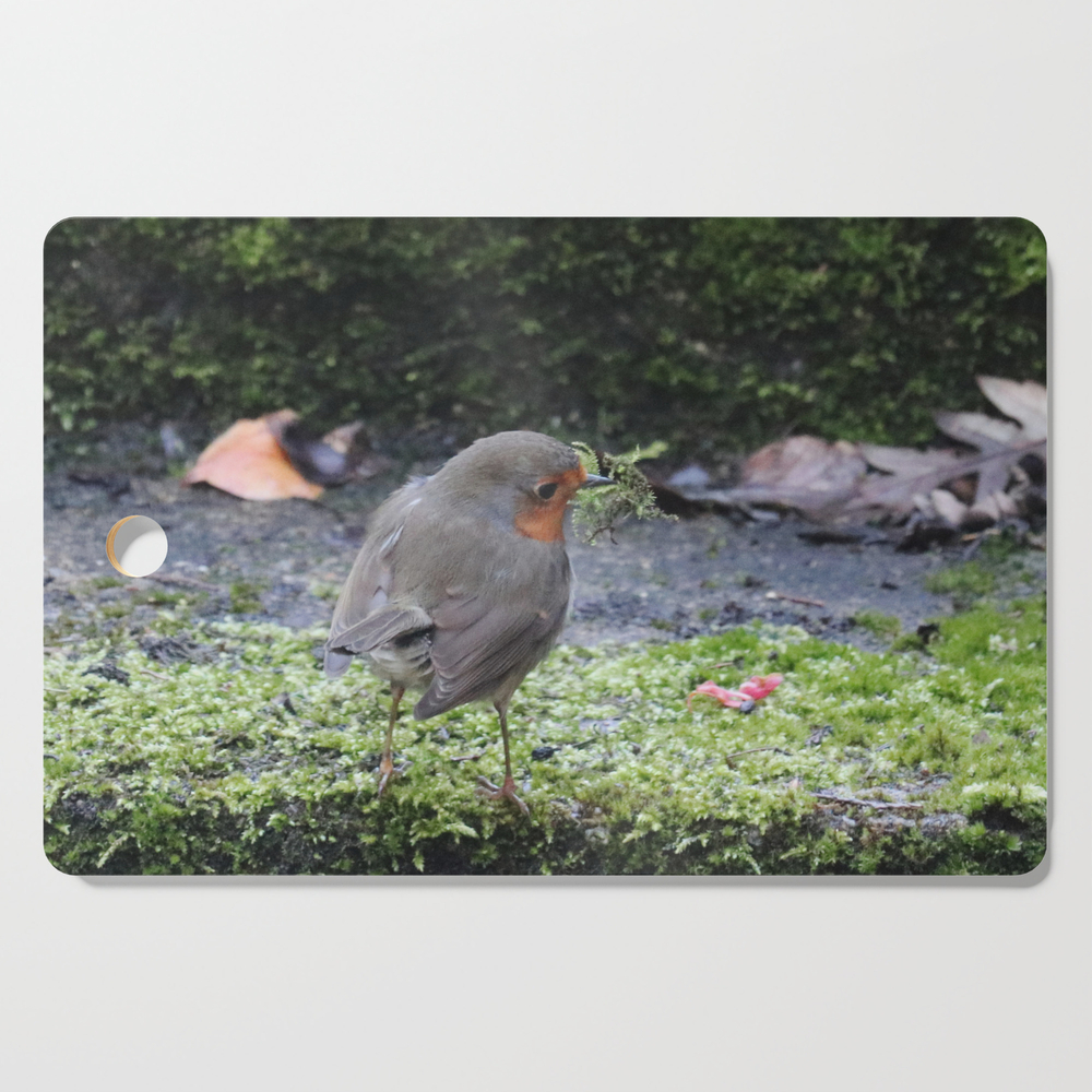 Robin Redbreast Cutting Board by bryanwb (DCB10736377) photo